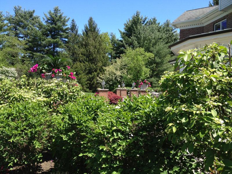 ... American Turf Garden Center ...