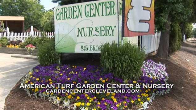 Great ... American Turf Garden Center